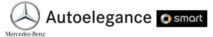 logo autoelegance per sito